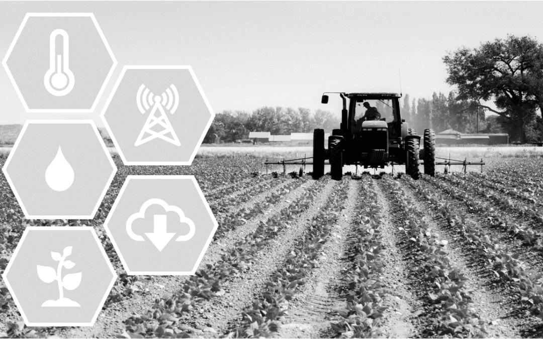 Agriculture et Big Data : La donnée est dans le pré